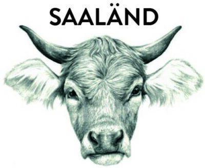 Saaländ Logo