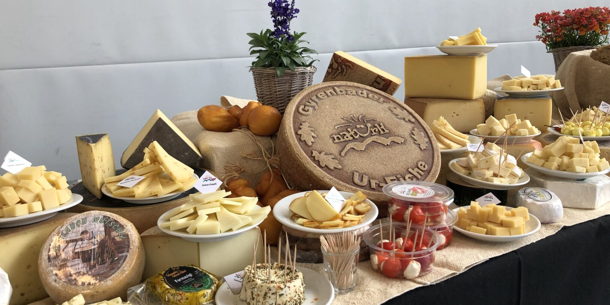 Restauration Buffet de fromages Schwingfest